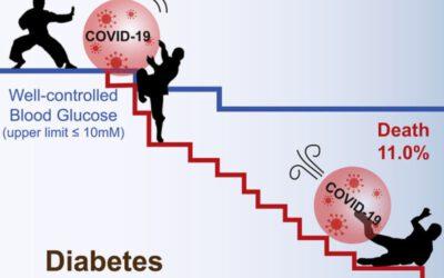 Versterk je immuunsysteem door je metabole gezondheid te optimaliseren – deel 2